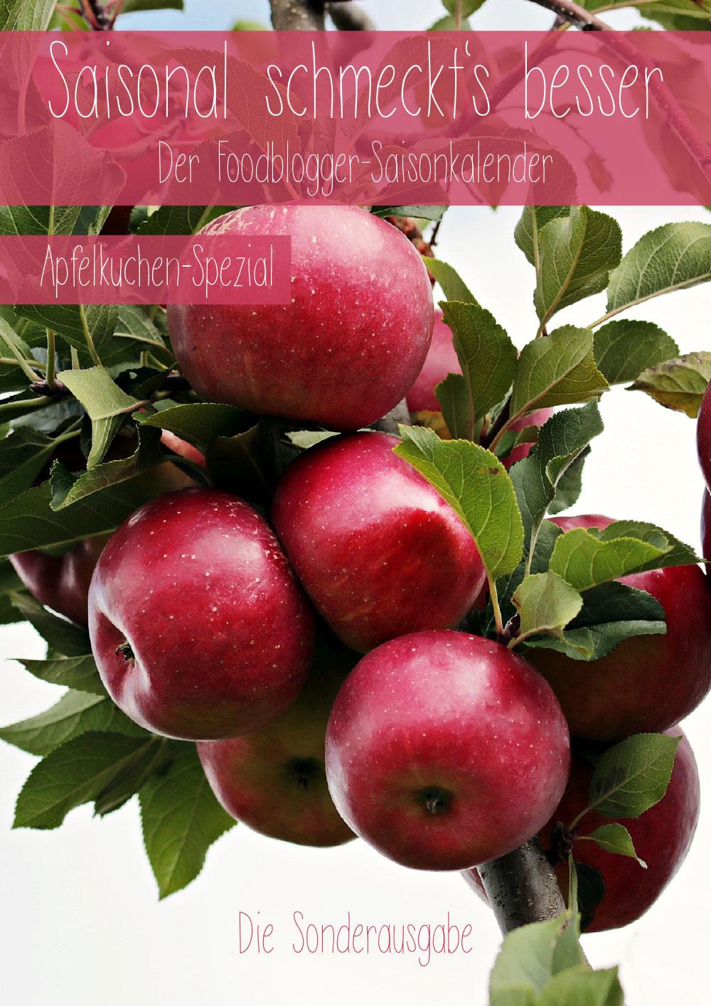 Saisonal schmeckts besser - Der Foodblogger Saisonkalender - Apfelkuchen-Spezial