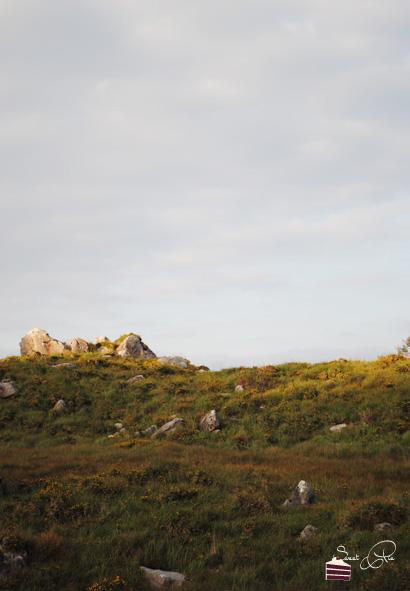 irlandbericht-98
